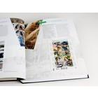 Davo Davo de luxe supplement, Ned. Geïllustreerd Verz. Velletjes, jaar 2013