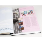 Davo Davo the luxe supplement, Illustrated Coll. Beautiful Netherlands, year 2013