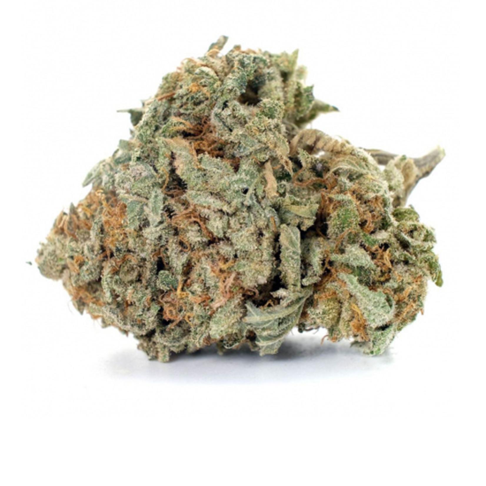 Gorilla Glue #4 cannabis seeds