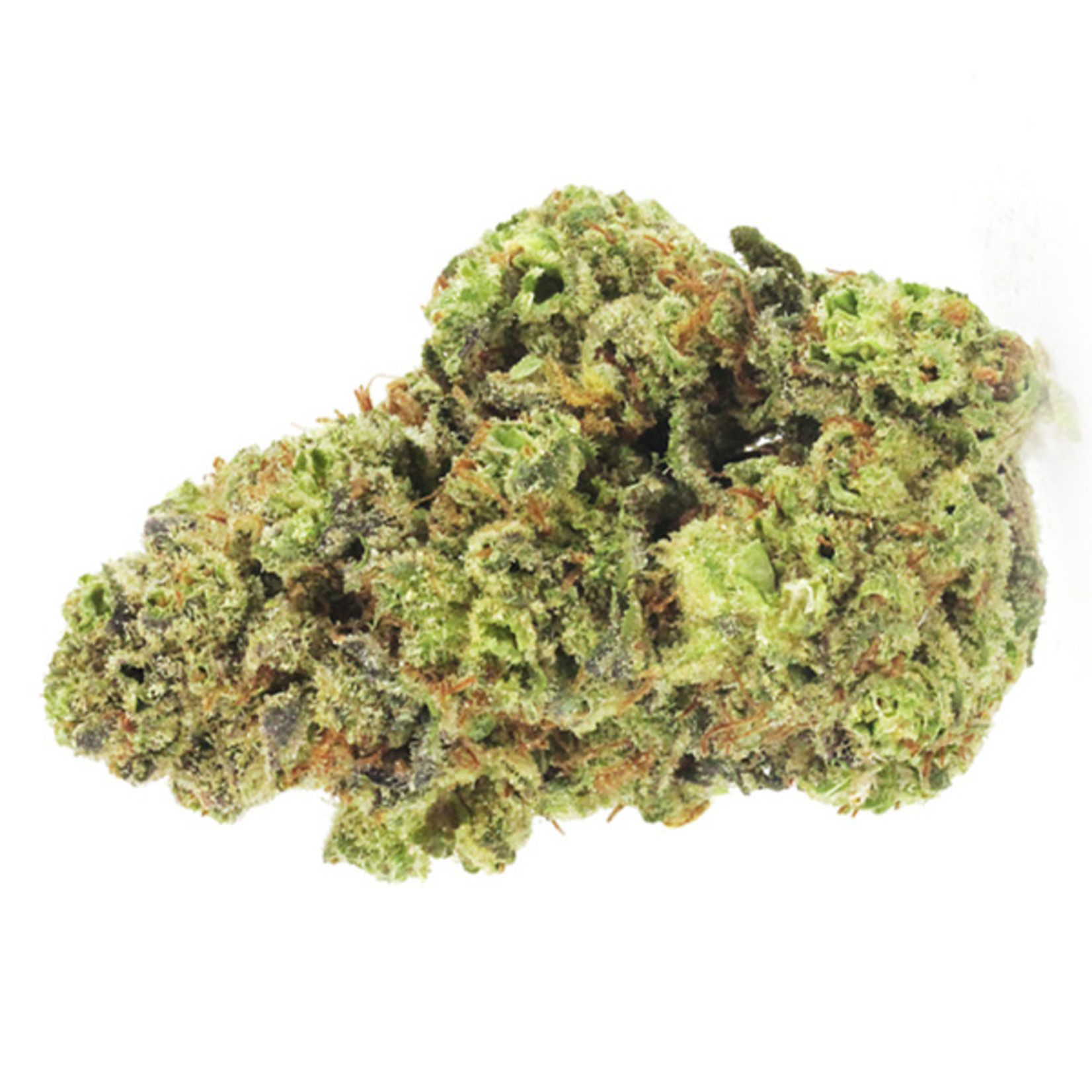 GMO Cookies cannabis seeds
