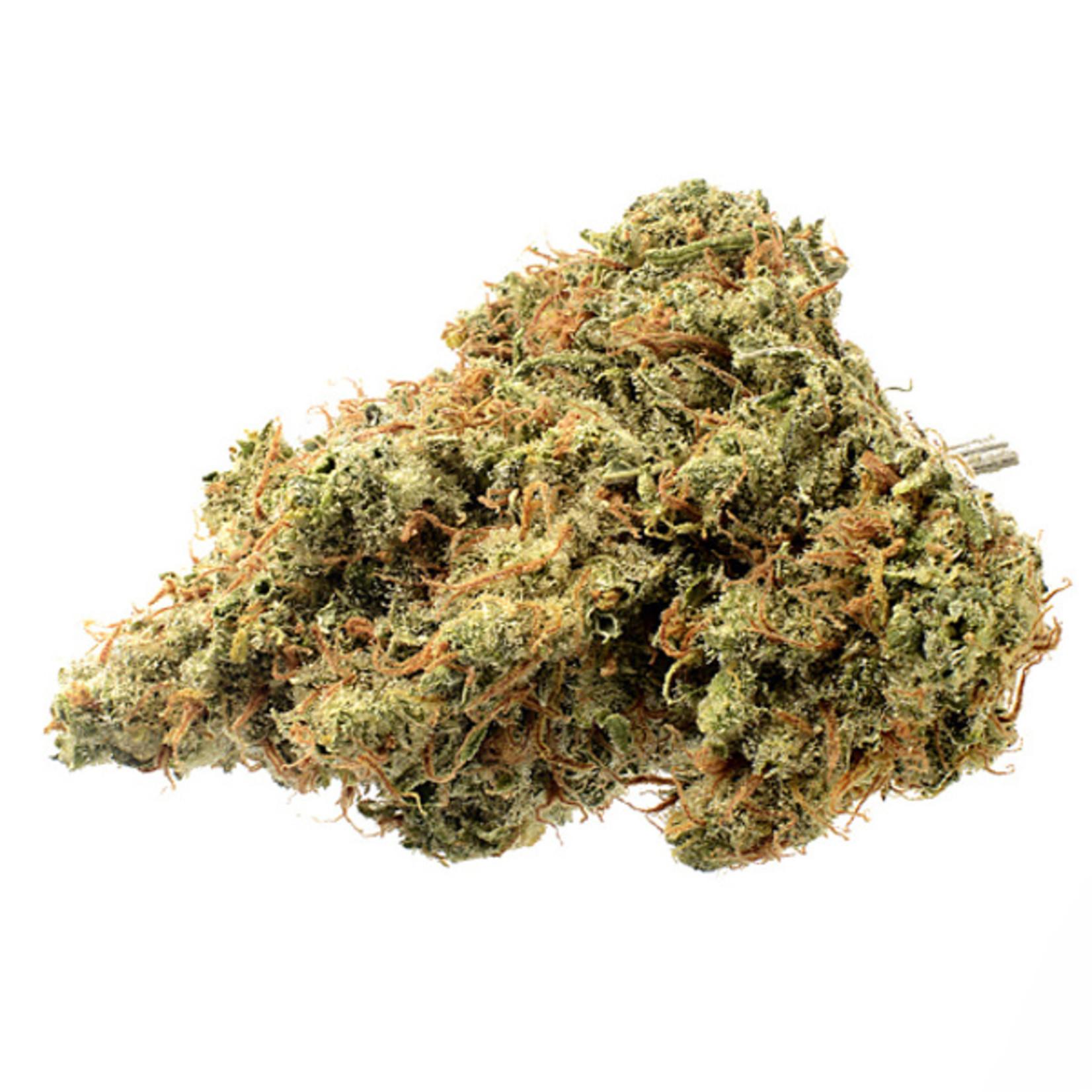 Strawberry Glue Cannabis Seeds