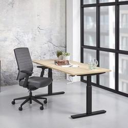 RM-Office O-Line Slingerbureau - T-Poot (Nieuw)