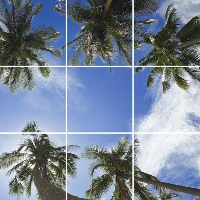 PURPL Techo de Nubes y Palmeras   Panel de techo fotográfico de acrílico   [IMG2]