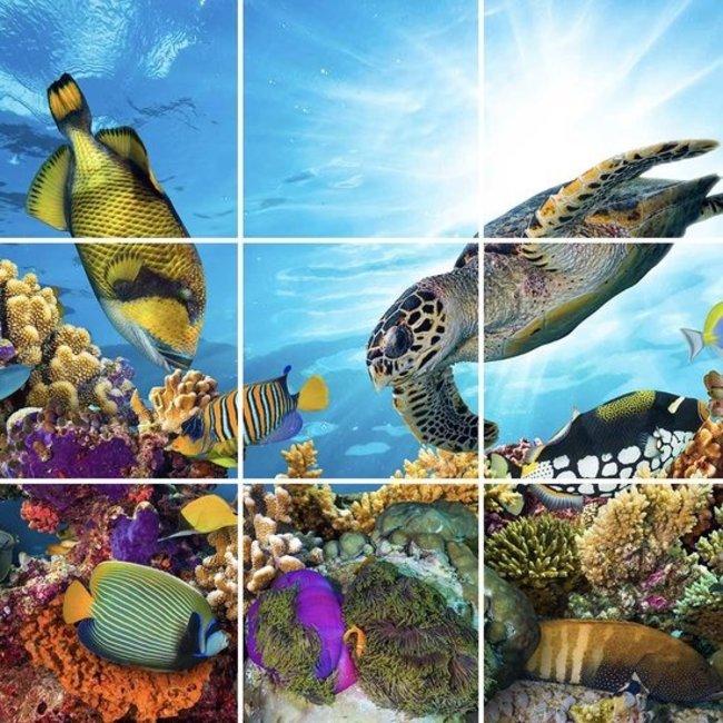 PURPL Techo de Océano   Panel de techo fotográfico de acrílico   [IMG26]