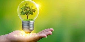 Pequeños pasos hacia un mundo sostenible