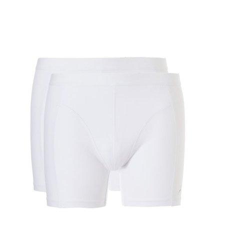 Ten Cate Heren Organic shorts 2-Pack - Wit