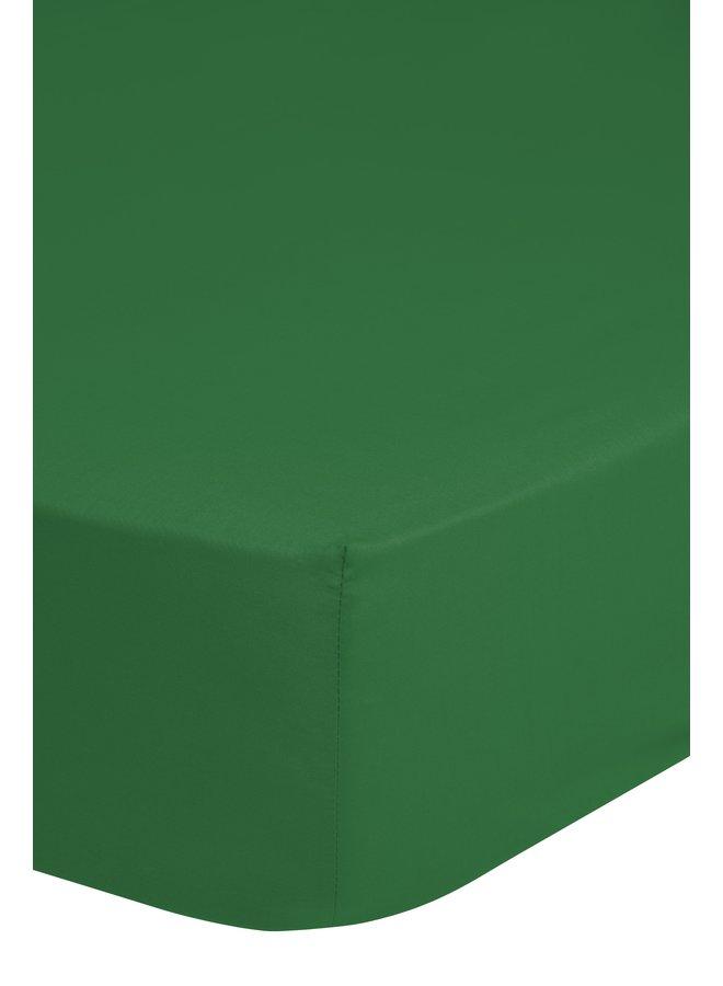 Hoeslaken 160x200 katoen Renforce groen