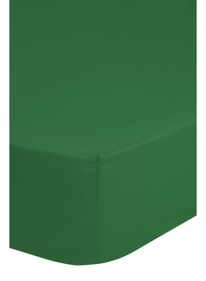 Hoeslaken 90x220 katoen Renforce groen