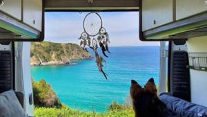 Must have voor jouw rondreis; dit duurzaam reispakket voor jouw hond