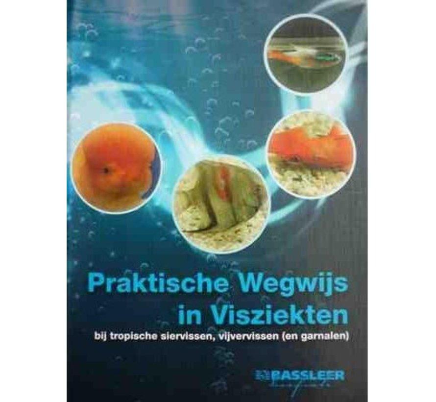 De Praktische Wegwijs in Visziekten