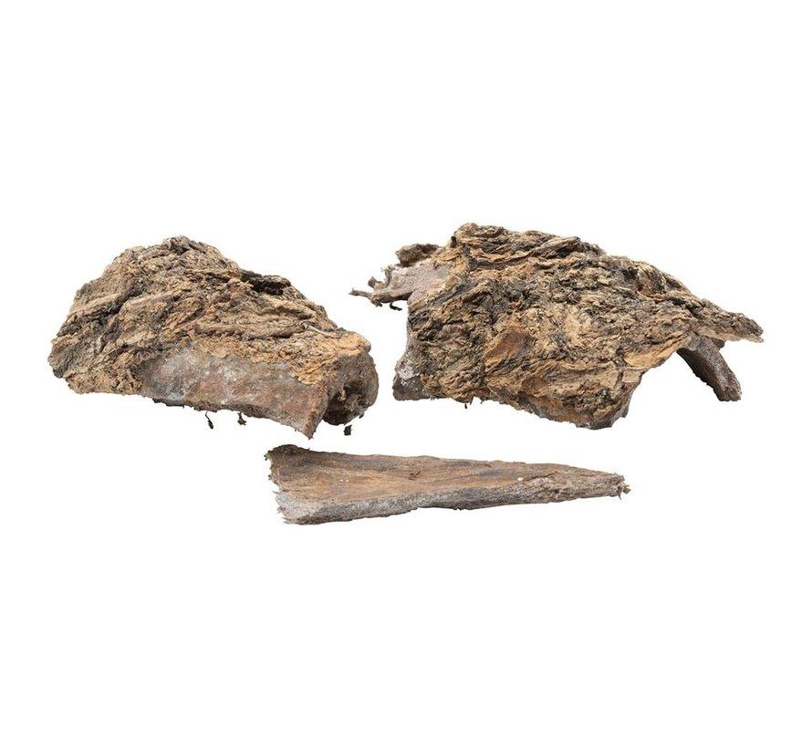 Catappa schors, bark (25gram)