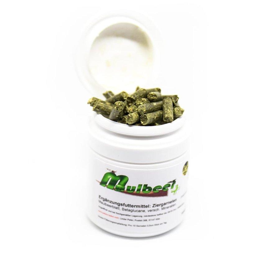 CSF Maulbeer+ (Moerbei) voedersticks