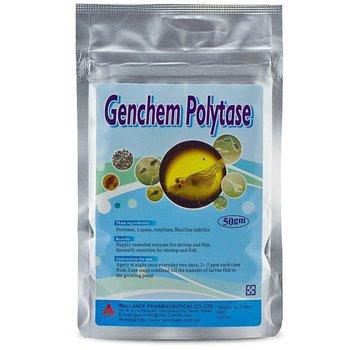 Genchem Biomax Genchem Biomax Polytase - 50g
