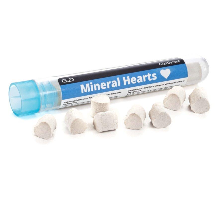 GlasGarten Mineral Hearts - mineralen