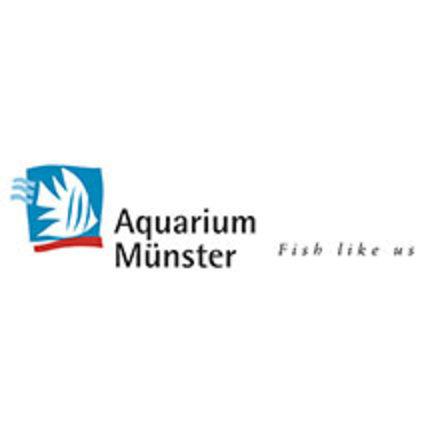 Aquarium Münster - garnalenvoer
