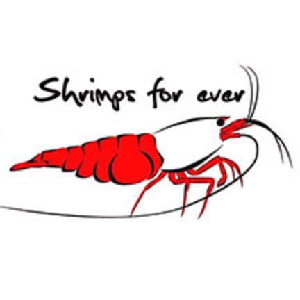 Shrimps Forever- garnalenvoer