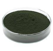 de Visvoer WebWinkel Spirulina pulver