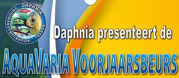 Daphnia voorjaarsbeurs