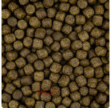Vivani Fishfood Color 3 of 6mm (vanaf 15 graden)