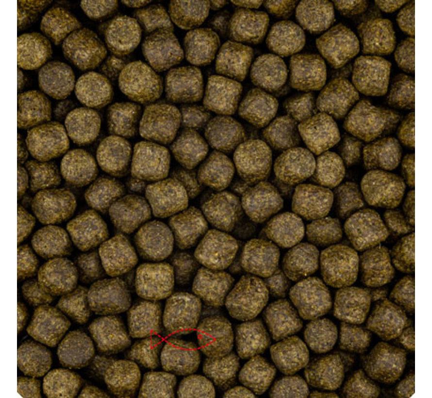 Color 3 of 6mm (vanaf 15 graden)