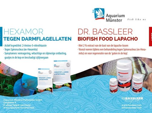 Dr. Bassleer Behandeling darmflagellaten Hexamor + Lapacho