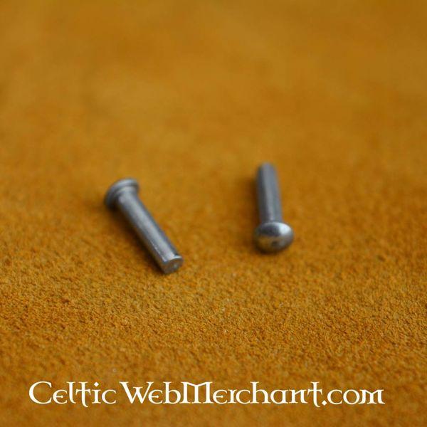 100 steel rivets 10 mm