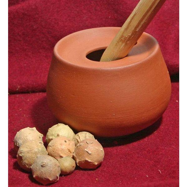 Gallnuts för bläck (80 gram)