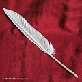 Goose feathers set of 10