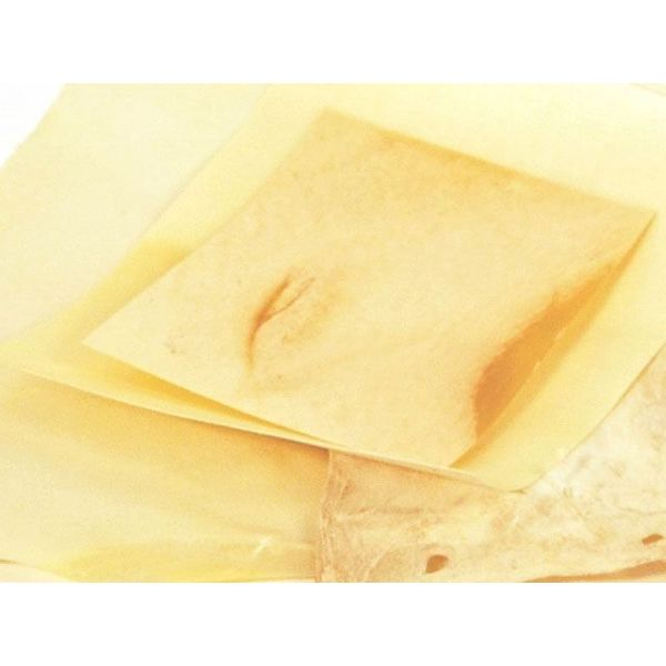 Pergament ark 20x15 cm
