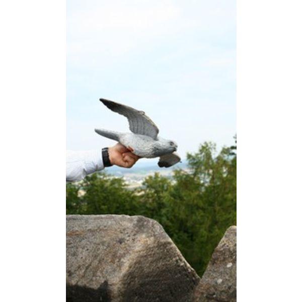 FB 3D flygande hawk