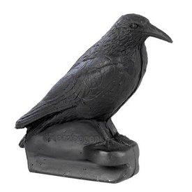 FB corbeau assis en 3D
