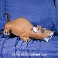 3D ratón almizclero