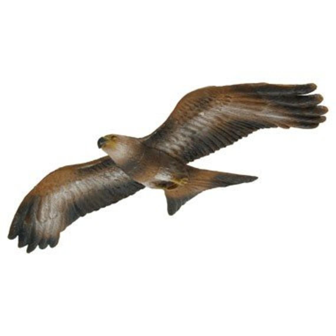 3D vliegende rode wouw