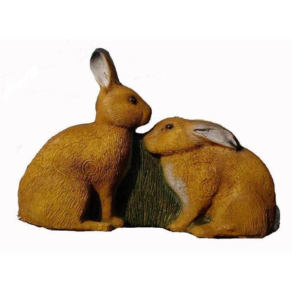IBB semi-3D två europeiska hare