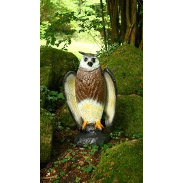 FB 3D sitting eagle owl