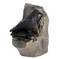 FB 3D cuervo en un arból