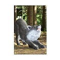 FB 3D knælende ulv
