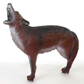 Coyote en 3D