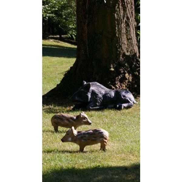 3D resting boar