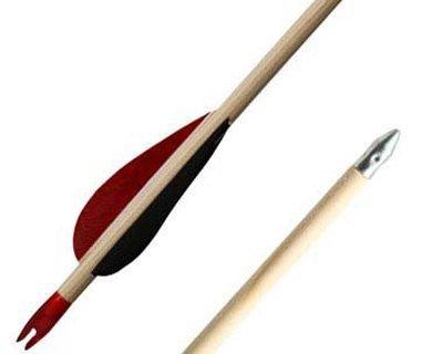Flèches en bois et flèches d'arbalète