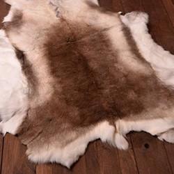 Animal huder