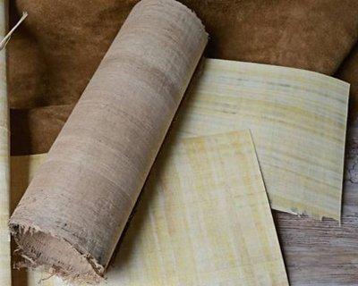 Papirus i pergamin