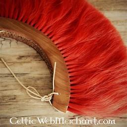 Roman crest, red