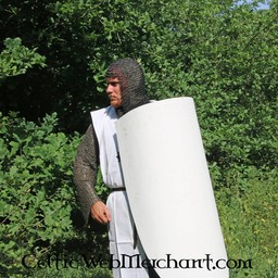 12th century Norman shield
