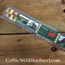 Earrings Celtic wreath, silvered