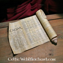 Caesar's De bello gallico