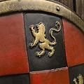 Epic Armoury LARP geblokt schild rood/zwart/goud