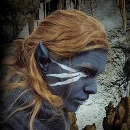 Ciemne elfie uszy