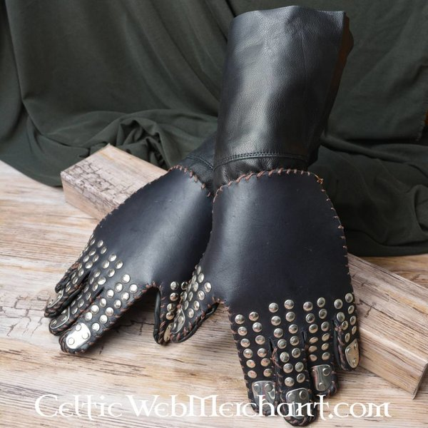 Gloves with plates