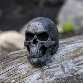 Epic Armoury LARP skull, steel color